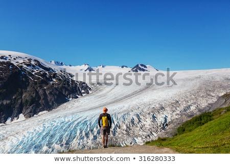Gletsjer ijs wateroppervlak mariene landschap aquatisch Stockfoto © cboswell