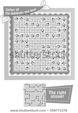 összes katicabogarak feketefehér játék gyerekek feladat Stock fotó © Olena