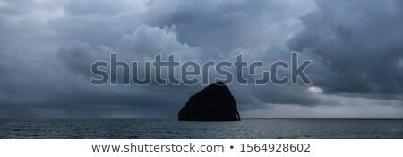 стог · сена · рок · закат · пушка · пляж · Орегон - Сток-фото © davidgn
