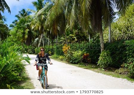 Menina ciclismo árvores viajar bicicleta outono Foto stock © IS2