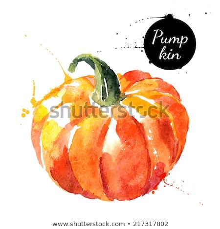 temporada · de · otoño · vector · dibujado · a · mano · acuarela · pintura · arte - foto stock © balasoiu