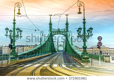 Budapeste liberdade ponte belo manhã céu Foto stock © Givaga