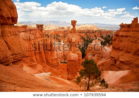 grand canyon with unique rock formations stock photo © tab62