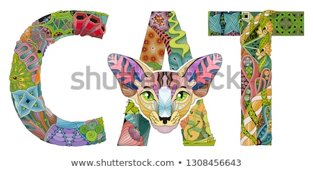 Kelime kedi çizim kediler vektör dekoratif Stok fotoğraf © Natalia_1947