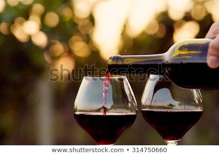 Vino rosso occhiali bottiglia rosa bere rosso Foto d'archivio © msdnv