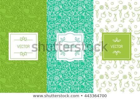 frische · Lebensmittel · Gemüse · Symbole · Grußkarte · Illustration - stock foto © cienpies