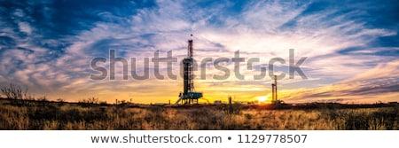 Olaj mező olajfúró sziget pumpa vízszintes kilátás Stock fotó © EvgenyBashta