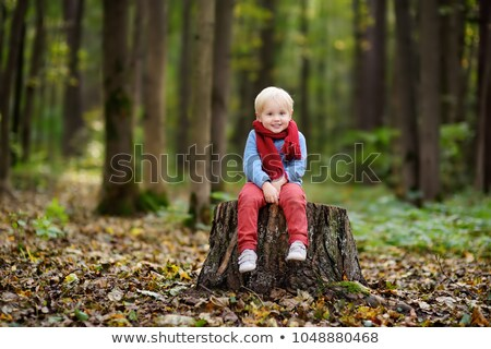 Stock photo: Portrait of a little boy enjoying an autumn weather