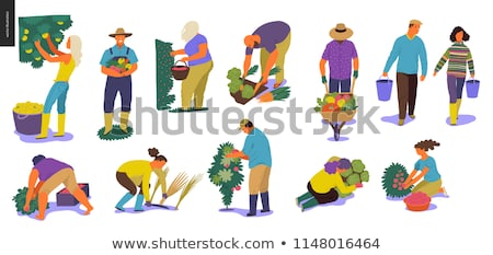 farmer working on farm with tools cartoon set stock photo © robuart