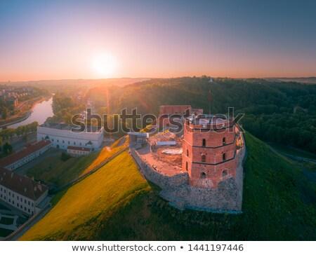 torony · Vilnius · tavasz · épület · város · nap - stock fotó © vapi