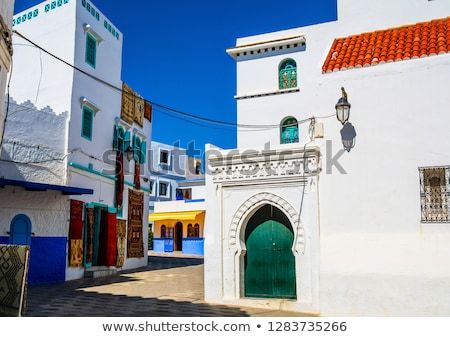 Decorative door from Fez, Morocco Stock photo © boggy