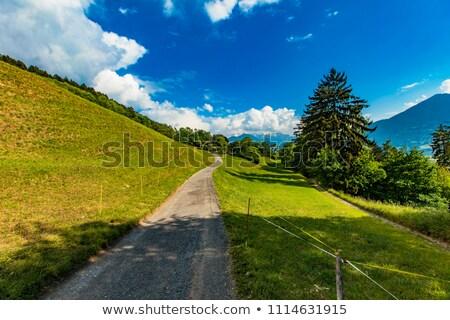 ösvény fa tájkép hegy nyár kék Stock fotó © boggy