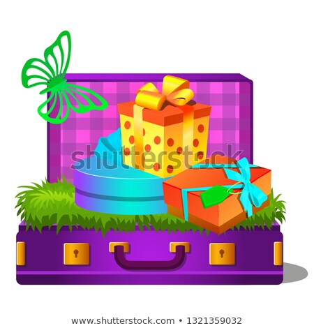 koffer · geïsoleerd · witte · vector · cartoon - stockfoto © Lady-Luck