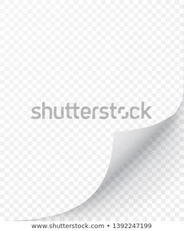 métallique · coin · vecteur · réaliste · papier - photo stock © olehsvetiukha