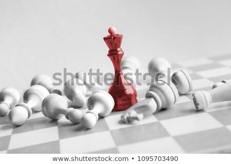 Szachy królowej biały król szachy człowiek Zdjęcia stock © bdspn