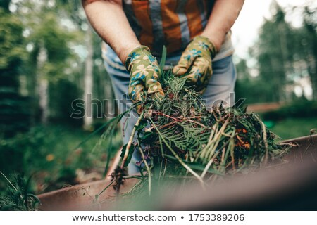 Agricultural Activity of Woman with Metal Cart Stock photo © robuart