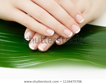 Beautiful delicate hands with manicure and green leaves, closeup isolated on white. Photo of a femal Stock photo © serdechny