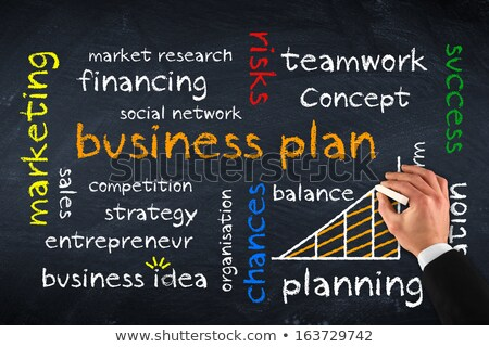Business Plan and Statistical Chart, Entrepreneur Stock photo © robuart