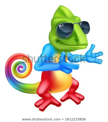 Kameleon cool cartoon hagedis karakter groene Stockfoto © Krisdog
