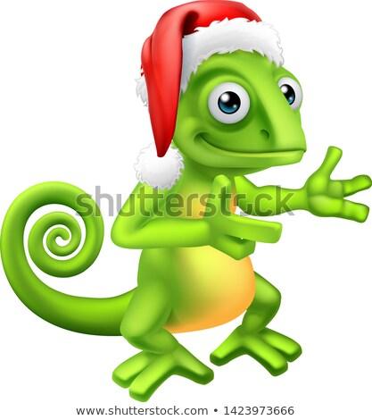 Camaleón Navidad sombrero senalando signo Foto stock © Krisdog