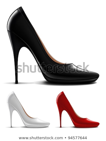 Woman in Dress and High Heels, Clothes Vector Stock photo © robuart