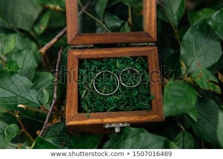 Dois dourado anéis de casamento decorativo caixa Foto stock © ruslanshramko