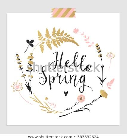 Hello tavasz kézzel rajzolt terv idézet üdvözlőlap Stock fotó © barsrsind