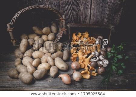 Hiszpanski jadalny grzyby tabeli widoku Zdjęcia stock © nito