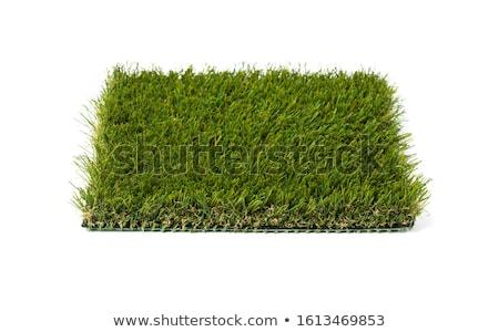 Sekcja sztuczny trawy biały zielone Zdjęcia stock © feverpitch