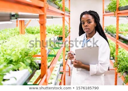 Fiatal komoly afrikai női biológus néz Stock fotó © pressmaster