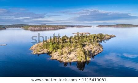 Forest on coast of Valaam island, Russia Stock photo © borisb17