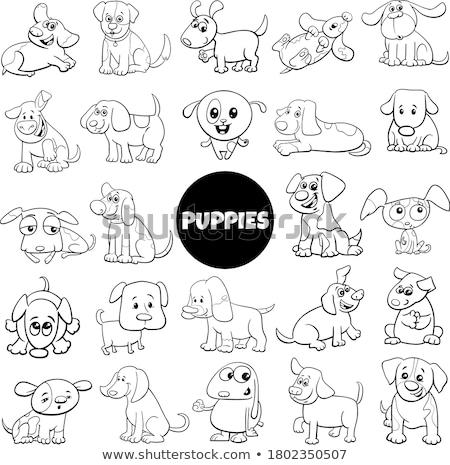 cartoon spotted puppy coloring book page Stock photo © izakowski