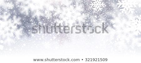 Kış çerçeve mor kar taneleri mavi Retro Stok fotoğraf © AnnaVolkova
