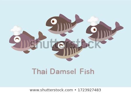 Kurutulmuş balık satış geleneksel gıda pazar Stok fotoğraf © eh-point
