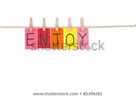 élvezi fából készült szeg színes szavak kötél Stock fotó © Ansonstock