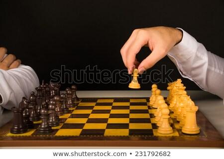 xadrez · jogo · peças · de · xadrez · tabuleiro · de · xadrez - foto stock © dmitry_rukhlenko
