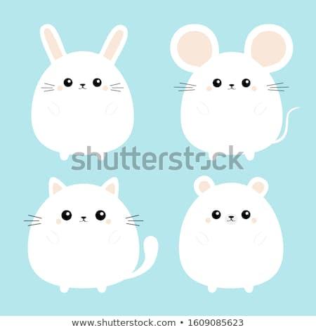 Vektor sziluett egér fehér festmény állatok Stock fotó © basel101658