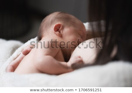 newborn baby near mother's breast stock photo © marylooo