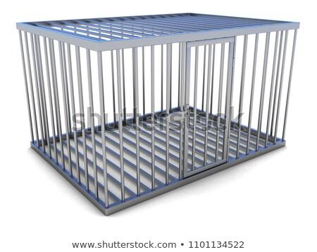 animale · trappola · chiuso · metal · allegata · terra - foto d'archivio © albund