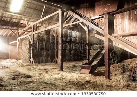 Bale of straw and wooden background Stock photo © dutourdumonde