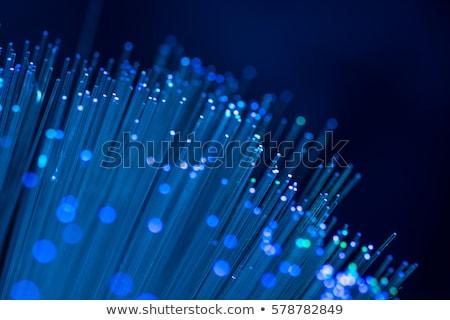 синий волокно оптика аннотация дизайна технологий Сток-фото © SSilver