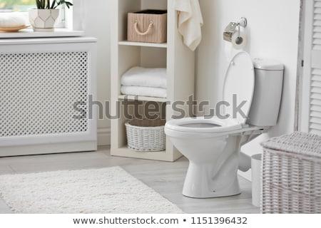 современных туалет ванную детали квадратный туалет Сток-фото © backyardproductions