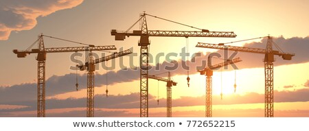 Crane Panorama Stock photo © Bertl123