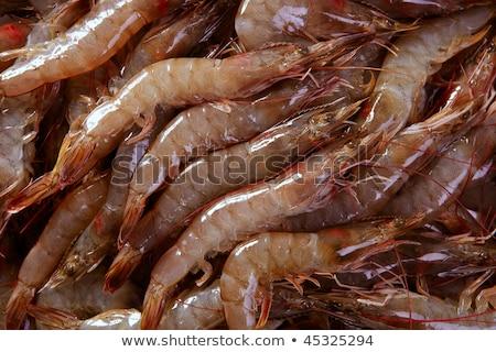 Garnélák minta textúra hal természet tenger Stock fotó © lunamarina