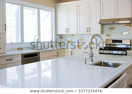 Vízvezetékszerelő csap mosogató férfi konyha portré Stock fotó © photography33