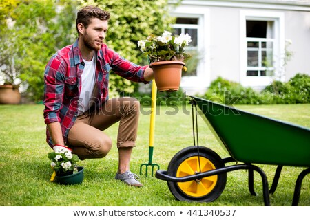 crouched casual man in the grass stock photo © feedough