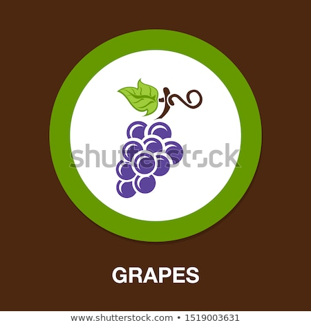 wine grapes   icons stock photo © djdarkflower