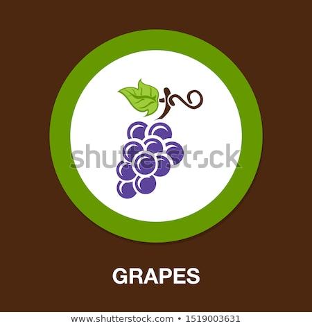Vinho uvas ícones projeto fruto vidro Foto stock © djdarkflower