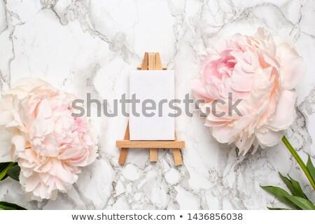 Festmény fából készült festőállvány izolált fehér fa Stock fotó © stevanovicigor