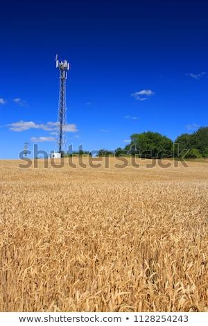 gsm · antenna · kék · ég · telefon · fém · hálózat - stock fotó © kayco